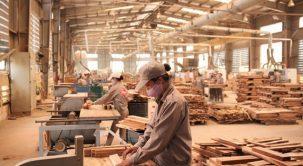 Máy thiết bị chế biến gỗ – Những lời khuyên an toàn chung